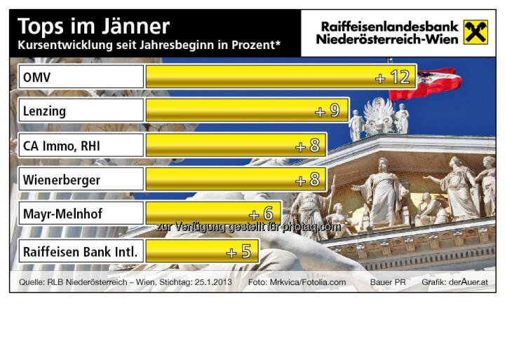 Wiener Börse, die besten ATX-TItel im Jänner 2013 (c) derAuer Grafik Buch Web