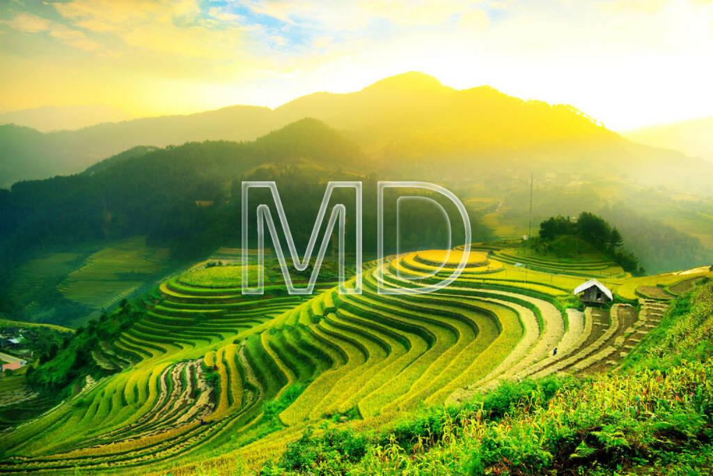Reisfeld, Reisterrasse, Vietnam, Boden, Erde, Landwirtschaft, http://www.shutterstock.com/de/pic-176408066/stock-photo-rice-fields-on-terraced-of-mu-cang-chai-yenbai-vietnam-rice-fields-prepare-the-harvest-at.html, © teilweise www.shutterstock.com (03.12.2014)