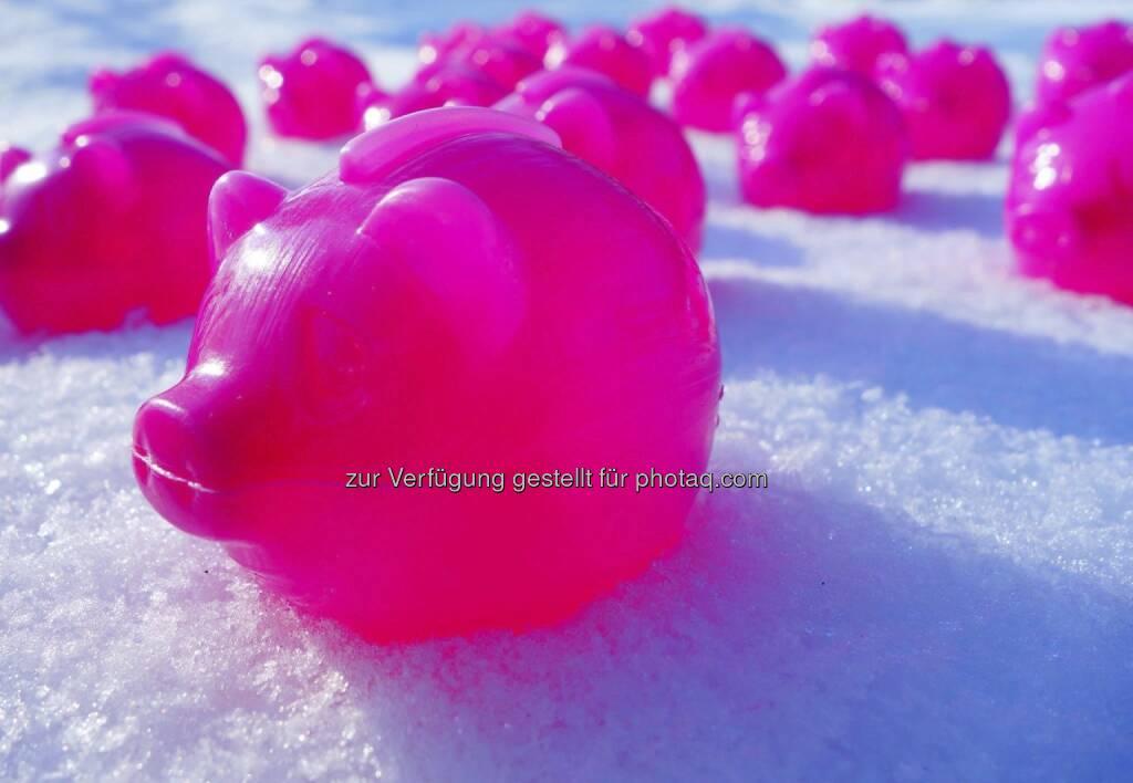 Schweine im Schnee oder die neue Eiszeit der Sparer, © Dirk Herrmann (10.02.2013)