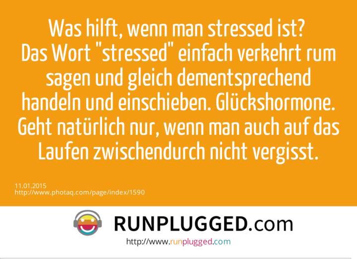 Was hilft, wenn man stressed ist? Das Wort stressed einfach verkehrt rum sagen und gleich dementsprechend handeln und einschieben. Glückshormone. Geht natürlich nur, wenn man auch auf das Laufen zwischendurch nicht vergisst.