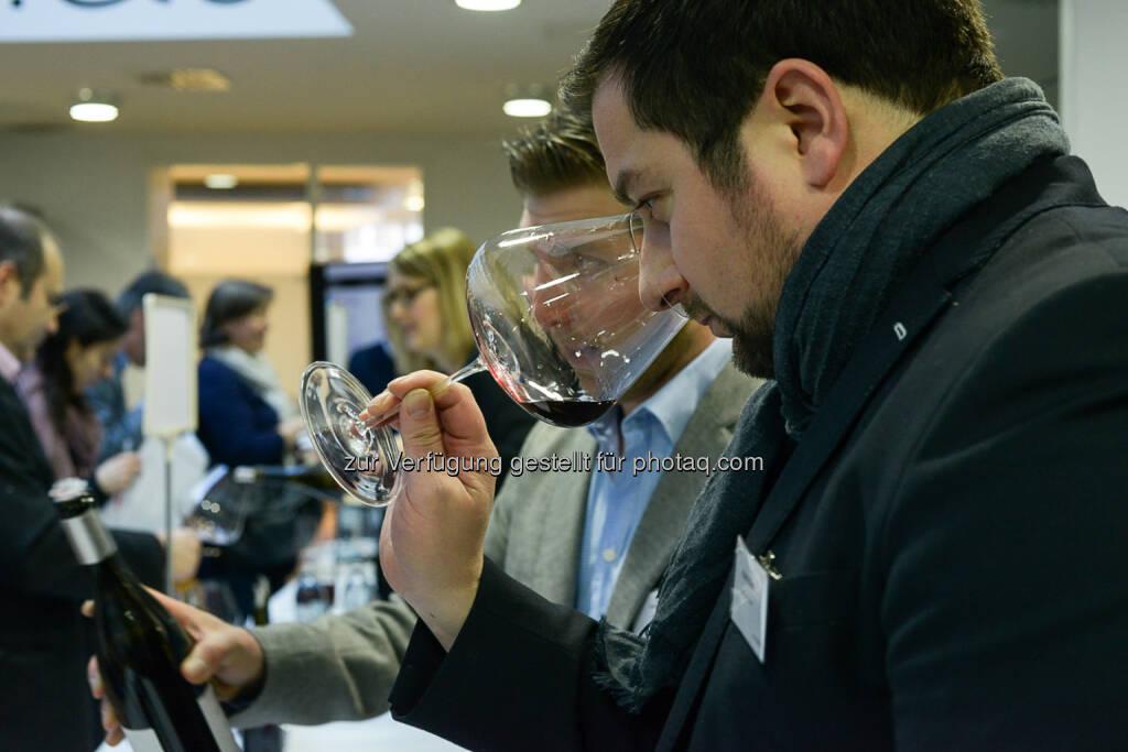 NZZ - Verkostung Spitzerberg-Weine, riechen, Weinverkostung, Wein, © Daniel Shaked, NZZ.at (03.02.2015)