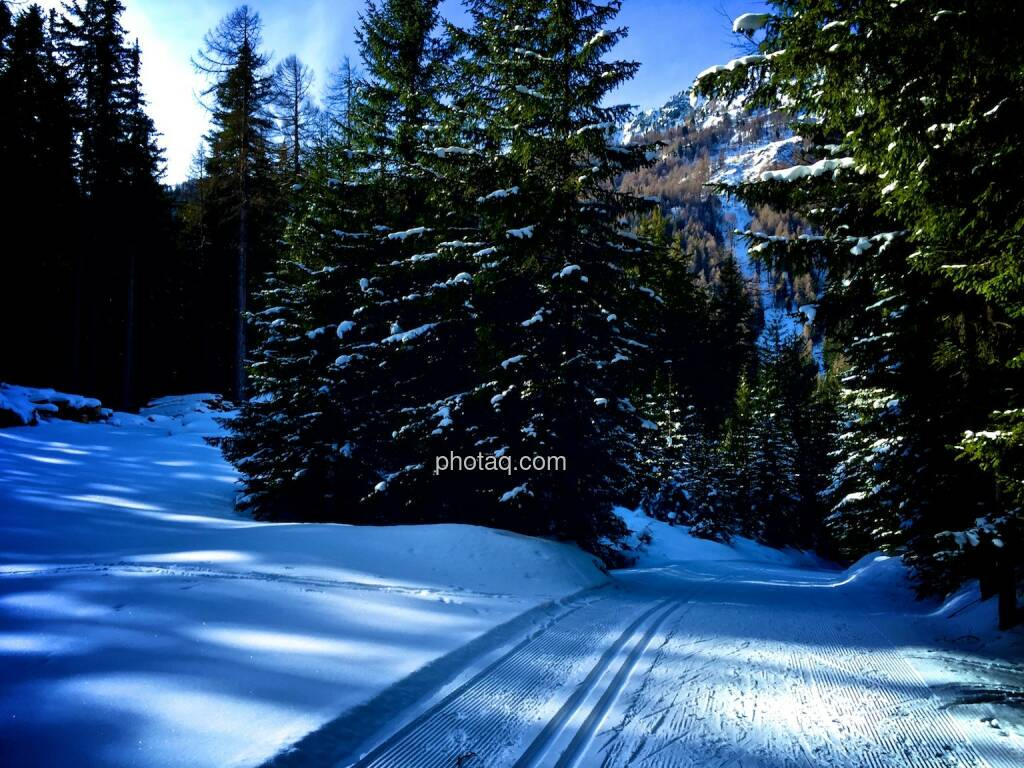 Loipe, Winter (04.02.2015)