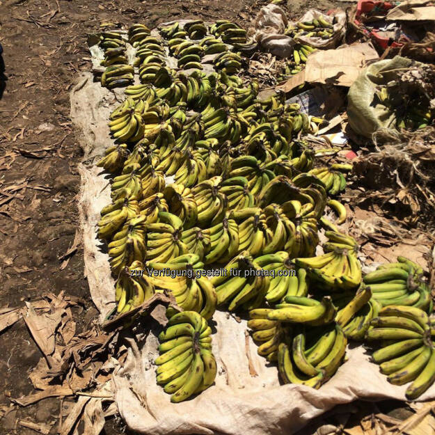 Kenia, Markt, Bananen, © Thomas Kratky (20.02.2015)