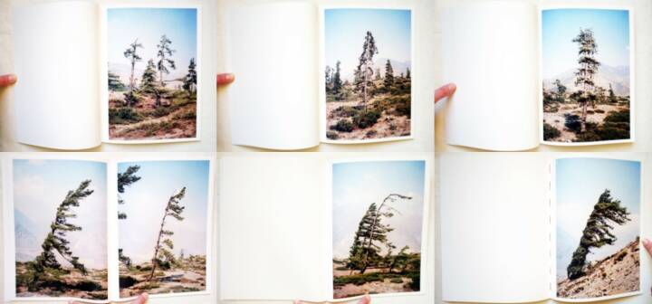 Vincent Delbrouck - Some Windy Trees, Self published/Wilderness 2013, Beispielseiten, sample spreads - http://josefchladek.com/book/vincent_delbrouck_-_some_windy_trees