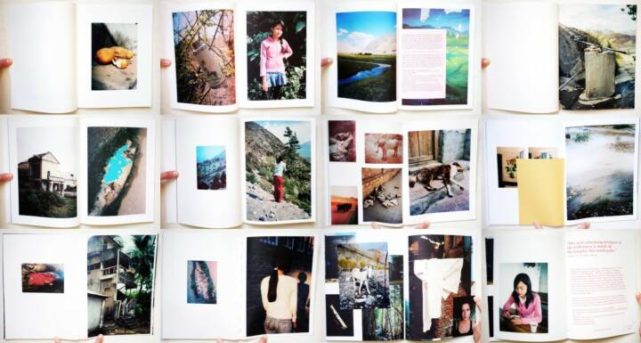 Vincent Delbrouck - As Dust Alights, Self published/Wilderness 2014, Beispielseiten, sample spreads - http://josefchladek.com/book/vincent_delbrouck_-_as_dust_alights