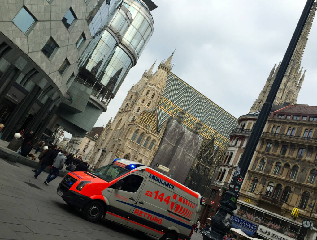 Stephansdom Rettung (11.04.2015)