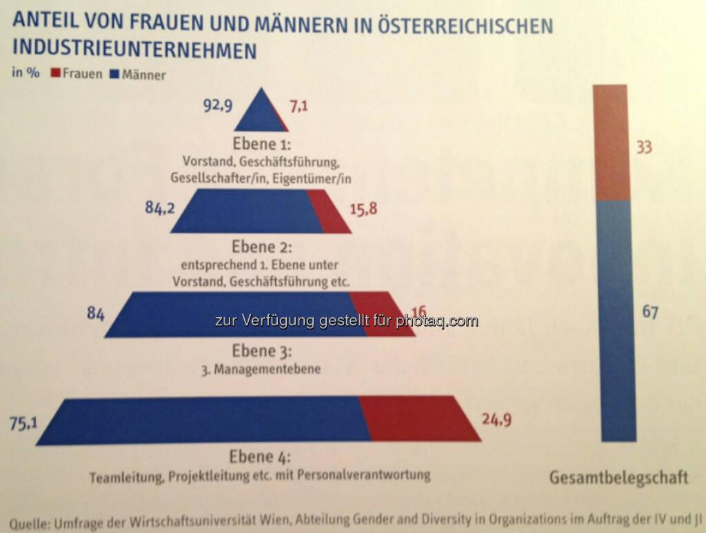 Anteil von Frauen und Männern in österreichischen Industrieunternehmen, © IV (24.02.2013)