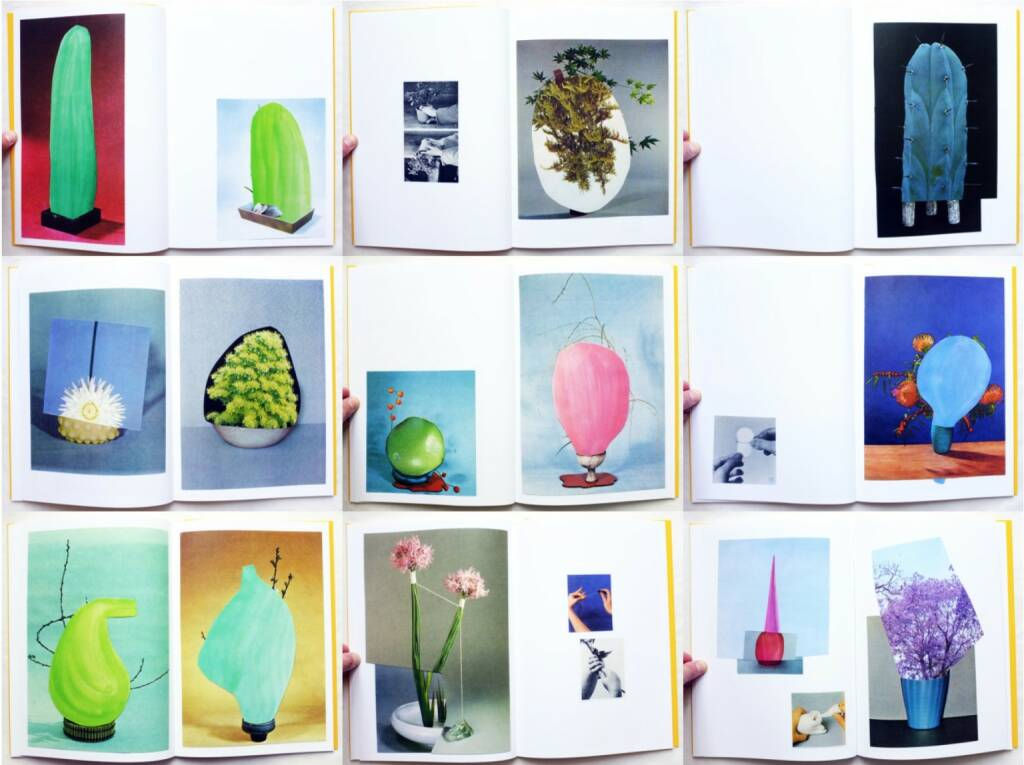 Ruth van Beek - The Arrangement, RVB Books 2013, Beispielseiten, sample spreads - http://josefchladek.com/book/ruth_van_beek_-_the_arrangement, © (c) josefchladek.com (08.05.2015)