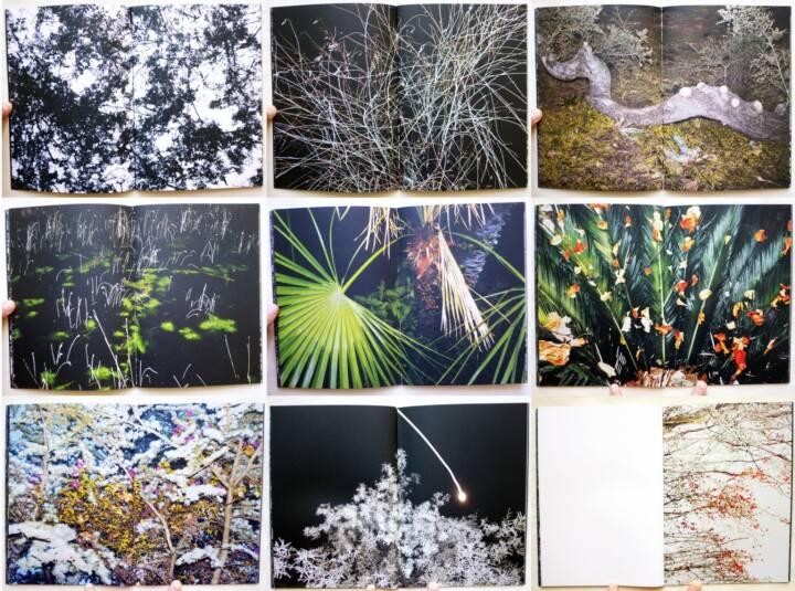 Petros Koublis - INLANDS, BlackMountain Books 2015, Beispielseiten, sample spreads - http://josefchladek.com/book/petros_koublis_-_inlands