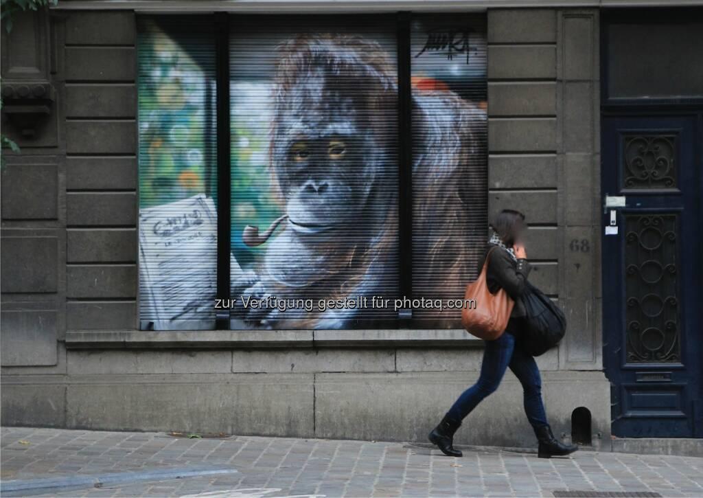 Common Walls - Agentur für urbane Raumgestaltung: Erste Graffiti-Agentur in Wien gegründet (C) Common Walls, © Aussender (17.06.2015)