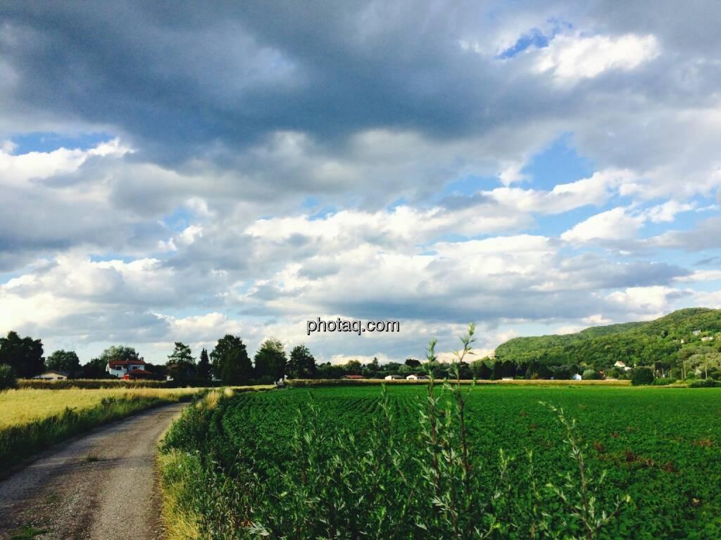 Feld, Wolken, © Martina Draper (23.06.2015)