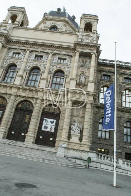 Deloitte - Professional Women Network, Naturhistorisches Museum, © Martina Draper für Deloitte (07.03.2013)