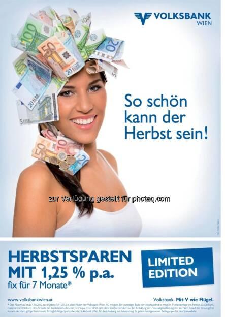 Volksbank WIen (09.03.2013)
