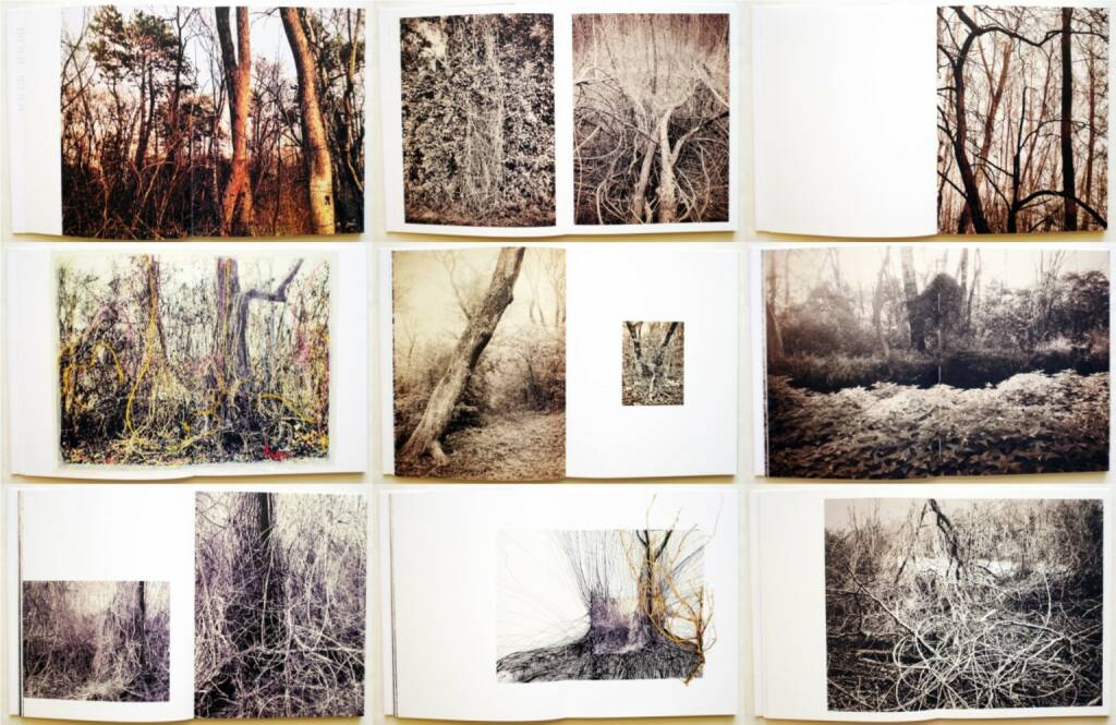 Regina Anzenberger - Roots & Bonds, AnzenbergerEdition 2015, Beispielseiten, sample spreads - http://josefchladek.com/book/regina_anzenberger_-_roots_bonds, © (c) josefchladek.com (13.07.2015)