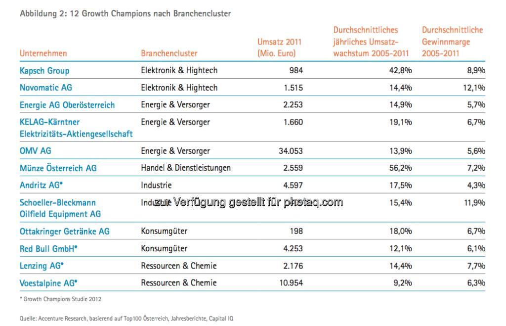 Die Growth Champions unter Österreichs Top100: Grafik Champions nach Branche - die Studie gibt es unter http://www.accenture.com/at-de/Pages/index.aspx zum Download (14.03.2013)