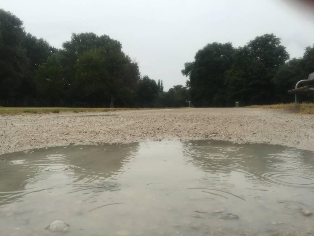 Lacke, Pfütze, Regen (31.07.2015)