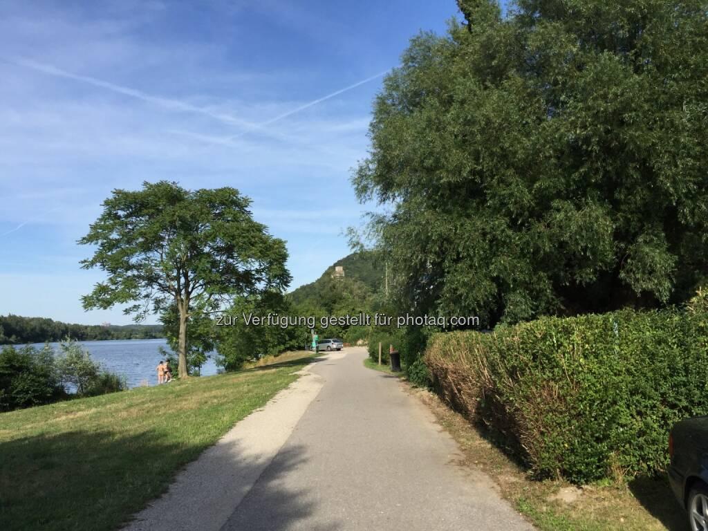 Donauradweg, Donau (03.08.2015)