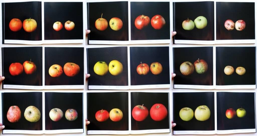 Philip Gaißer & Niklas Hausser - Alma, Spector Books 2014, Beispielseiten, sample spreads - http://josefchladek.com/book/philip_gaisser_niklas_hausser_-_alma, © (c) josefchladek.com (10.08.2015)