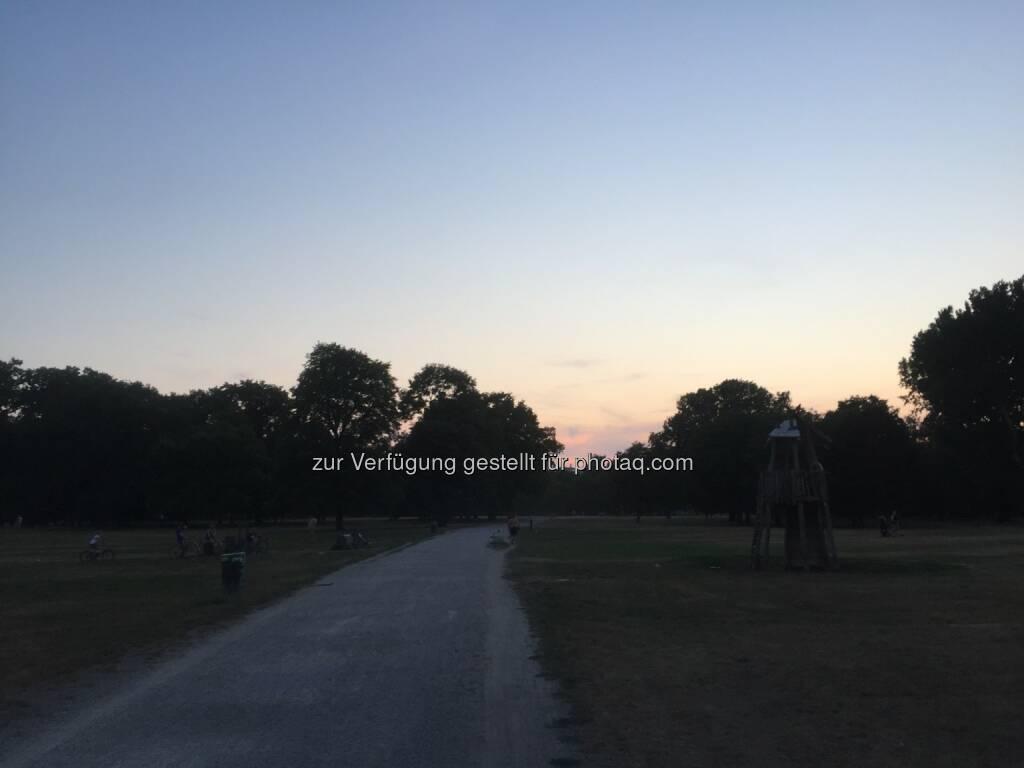 Dämmerung, Weg (12.08.2015)