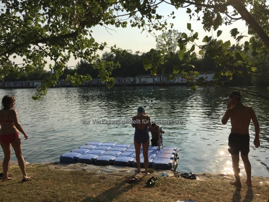 Badeteich, Teich, Sommer, Wasser, schwimmen (14.08.2015)