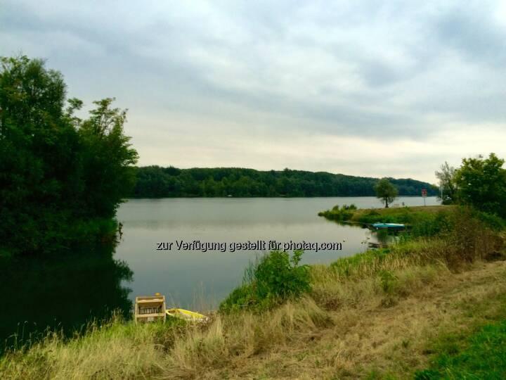 Donaualtarm Greifenstein
