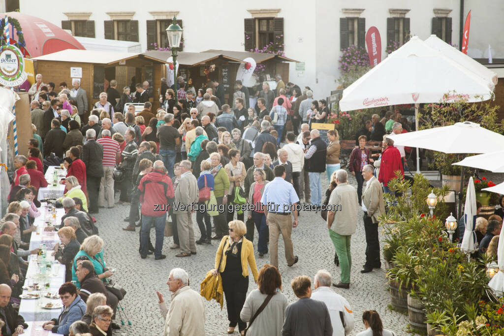 Rust : Gans Burgenland feiert ein Fest für's Federvieh! : Mit dem Gans Burgenland Genuss Festival wird Rust auch heuer wieder von 9. bis 11 Oktober zur Genuss-Metropole des Burgenlandes : Fotograf: EMG/Fotocredit: Burgenland Tourismus, © Aussender (26.08.2015)