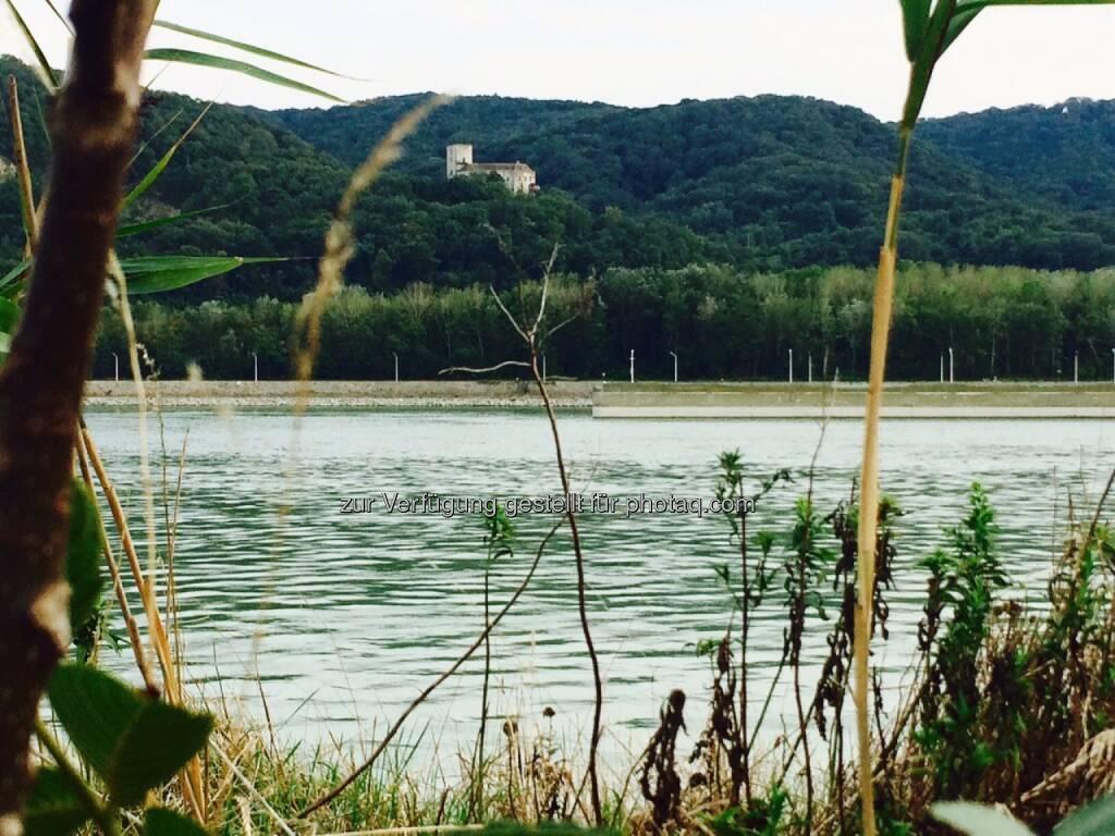 Burg Greifenstein, © Martina Draper (03.09.2015)