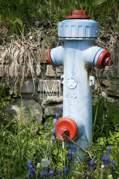 Hydrant, © (C) Martina Draper (20.03.2013)