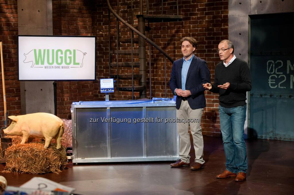 Start-Up-Projekt Wuggl : (c) Nick Albert (08.09.2015)