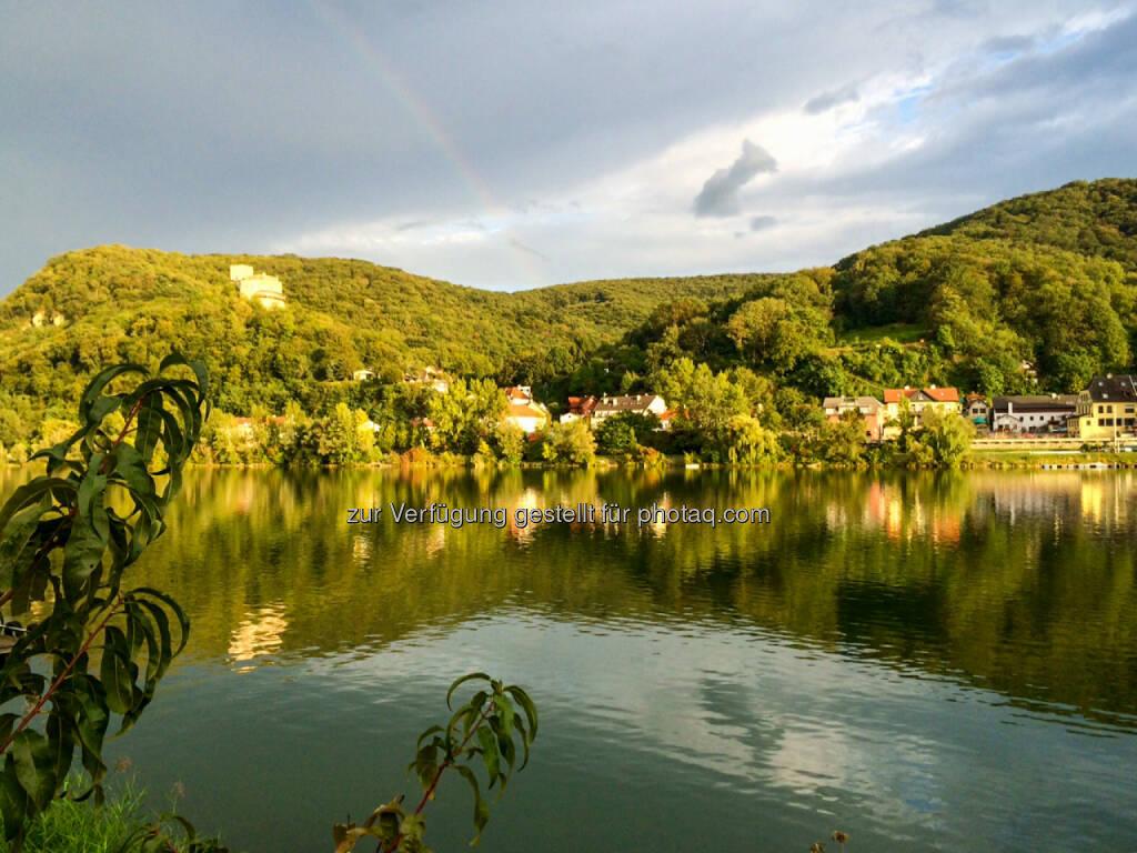 Donaualtarm Greifenstein, Wasser, See, © Martina Draper (19.09.2015)