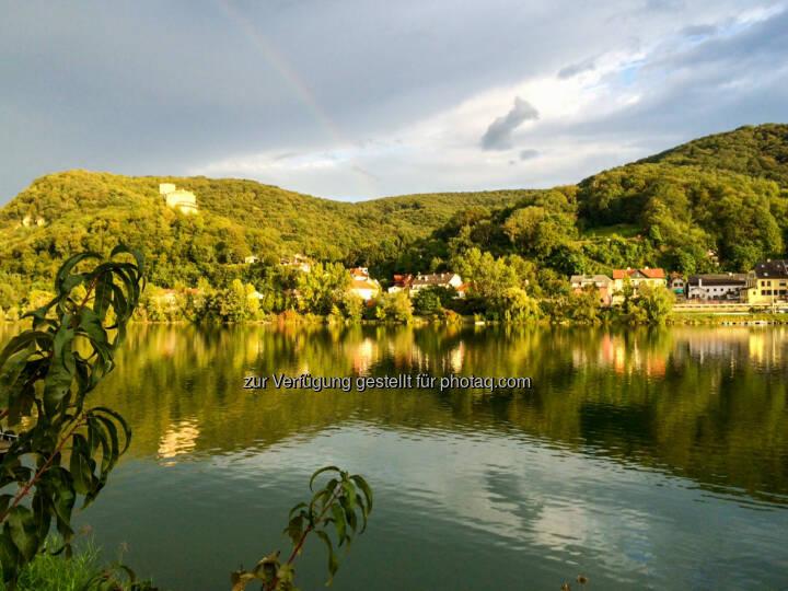Donaualtarm Greifenstein, Wasser, See