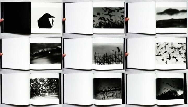 Masahisa Fukase - Karasu (The Solitude of Ravens), Rat Hole gallery 2008, Beispielseiten, sample spreads -  http://josefchladek.com/book/masahisa_fukase_-_karasu_the_solitude_of_ravens