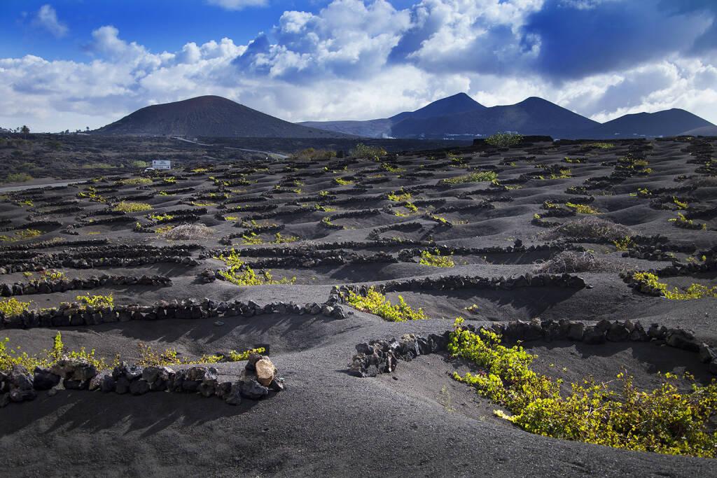 Lanzarote La Geria Weingut, schwarz, Lava, kanarische Inseln, http://www.shutterstock.com/de/pic-154072331/stock-photo-lanzarote-la-geria-vineyard-on-black-volcanic-soil-in-canary-islands.html, © www.shutterstock.com (25.11.2015)