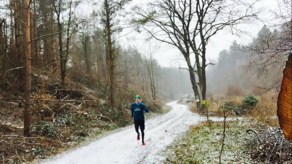 1.1.: 12k-Neujahrsrunde im Wienerwald  (01.01.2016)