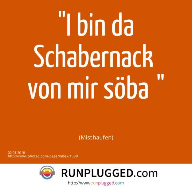 2.1. I bin da Schabernack <br>von mir söba<br><br> (Misthaufen) (02.01.2016)