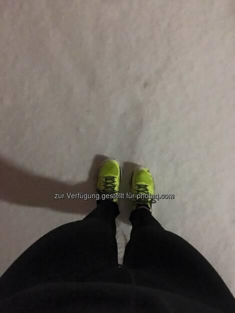 Laufen im Schnee, © Angelika Altmann-Haumer (05.01.2016)