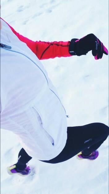 Winterlauf Snow Run Corinna Choun (06.01.2016)