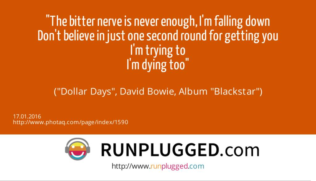 14.1. The bitter nerve is never enough, I'm falling down<br>Don't believe in just one second round for getting you<br>I'm trying to<br>I'm dying too<br><br> (Dollar Days, David Bowie, Album Blackstar) (17.01.2016)