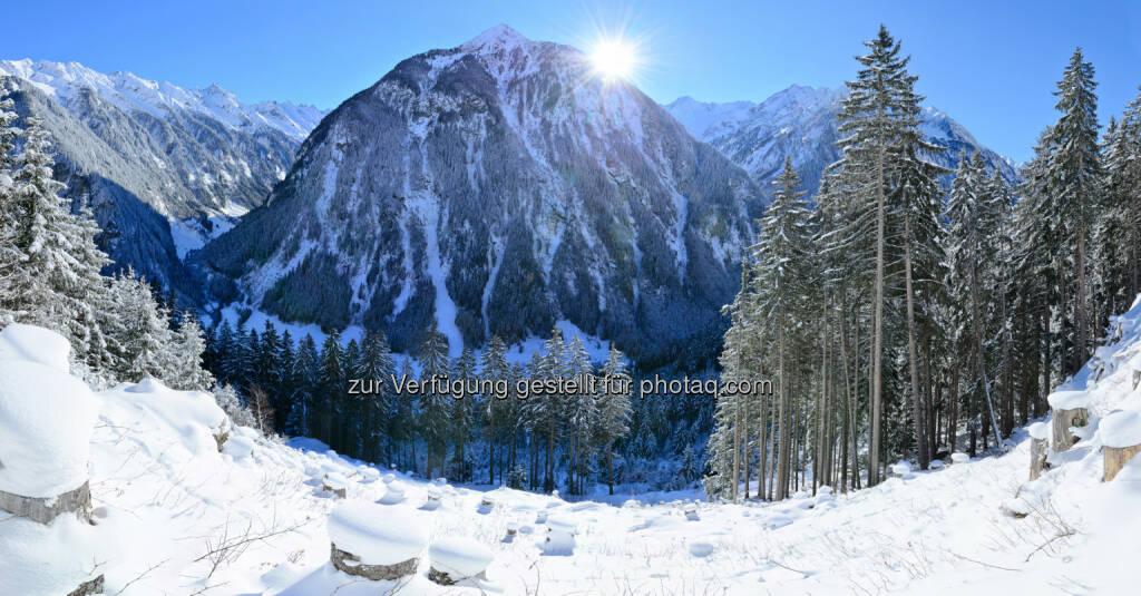 Ginzling, Zillertal : Helvetia sponsert den Alpinen Schutzwaldpreis : Helvetia setzt in Kooperation mit den Österreichischen Bundesforsten (ÖBf) im Frühling 2016 im ÖBf-Forstrevier Hinteres Zillertal in Tirol das nächste Schutzwald-Projekt um : Insgesamt 10.000 Jungbäume sollen nach der Schneeschmelze an den steilen Talhängen – wie hier in Ginzling – gezielt aufgeforstet werden : Fotocredit: Helvetia, © Aussendung (25.01.2016)