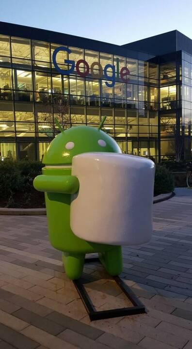 Google (by Nina Haas)
