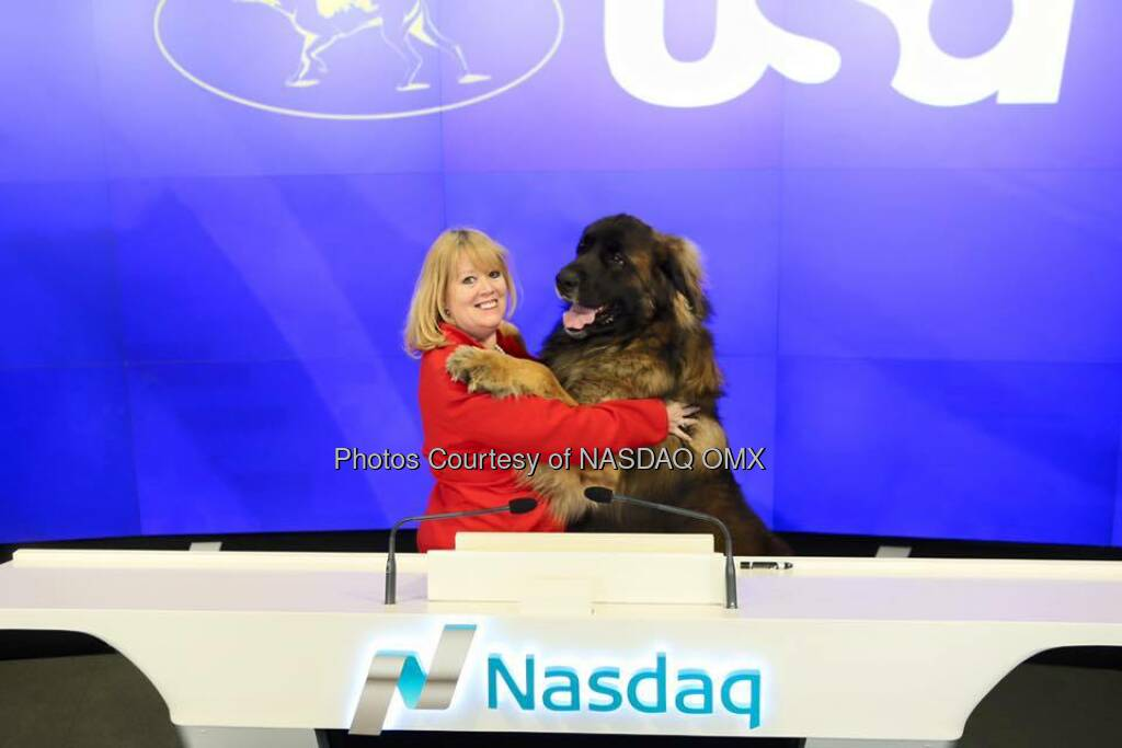 Westminster Kennel Club Dog Show rings the Closing Bell to celebrate the 140th show which will broadcast on CNBC and USA Network!   Source: http://facebook.com/NASDAQ (10.02.2016)