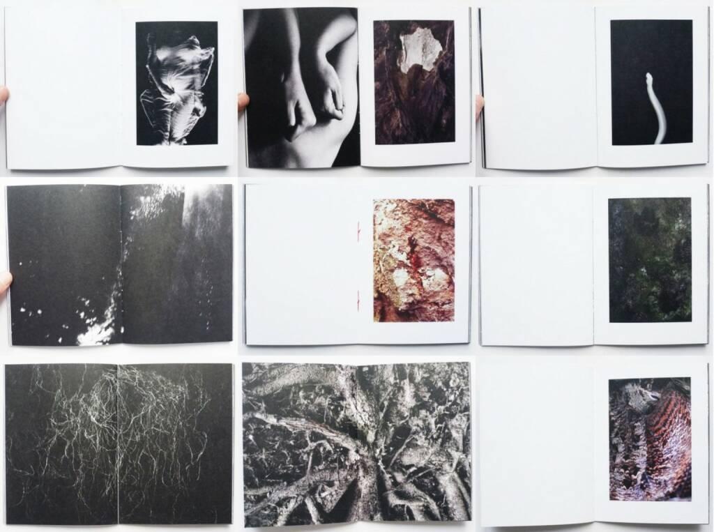 Anna Block - Waters Break Rocks, Self published 2015, Beispielseiten, sample spreads - http://josefchladek.com/book/anna_block_-_waters_break_rocks, © (c) josefchladek.com (12.02.2016)