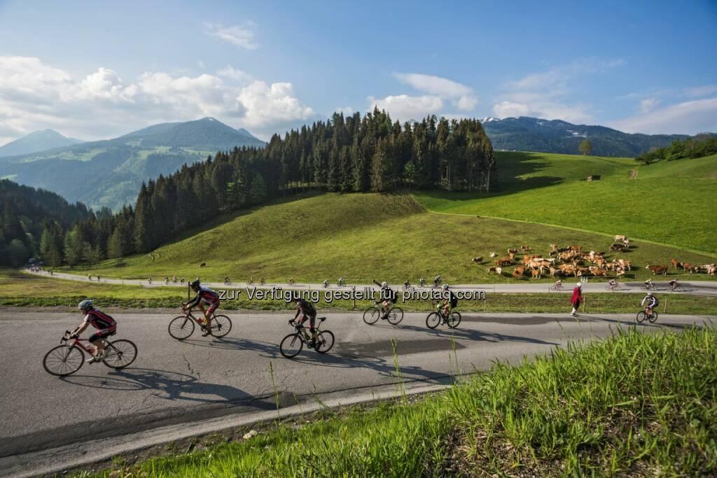 Anstieg Vorberg : 23. Amadé Radmarathon am Sonntag, den 22. Mai 2016 in Radstadt, Salzburger Land : Fotocredit: Tourismusverband Radstadt/Mandl, © Aussendung (09.03.2016)
