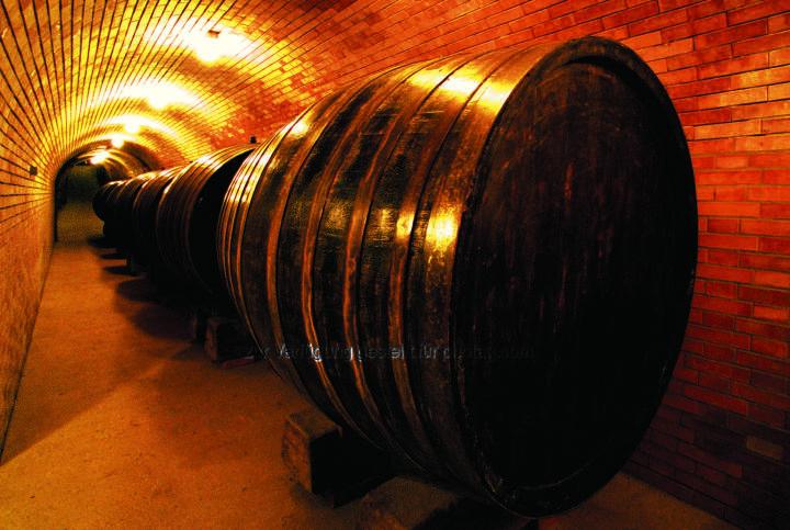 Weingut Baumgartner, Weinviertel : Der Grüne Veltliner Rosenprinzessin wurde beim Internationalen Weinpreis Mundus Vini in Deutschland mit einer Goldmedaille ausgezeichnet : Fotocredit: Ing. W. Baumgartner GmbH&CO KG
