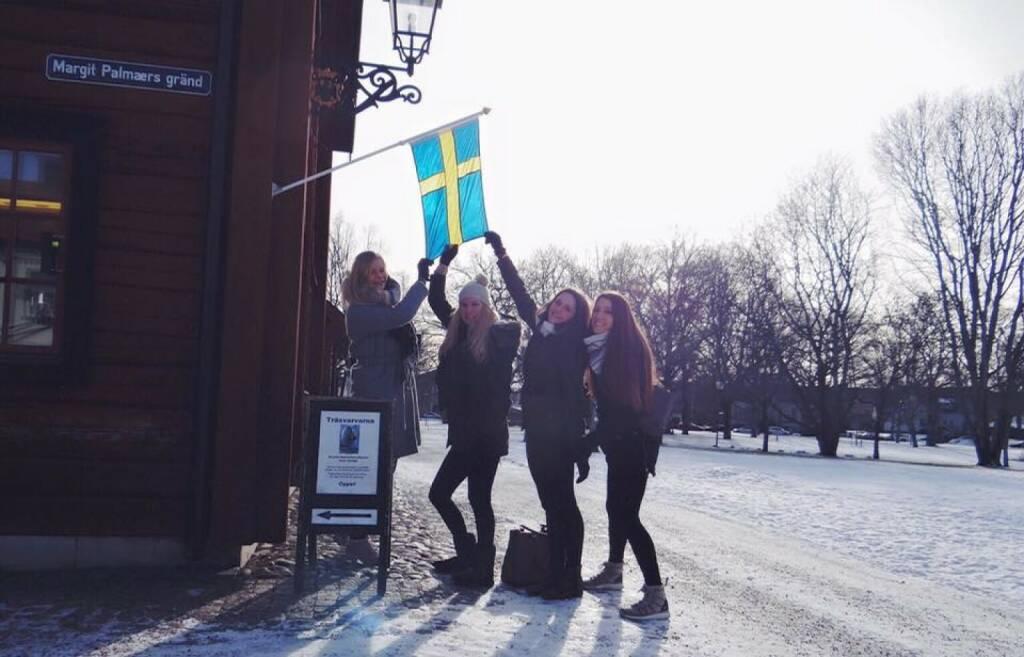 Schweden by Melanie Raidl, © Melanie Raidl (21.03.2016)
