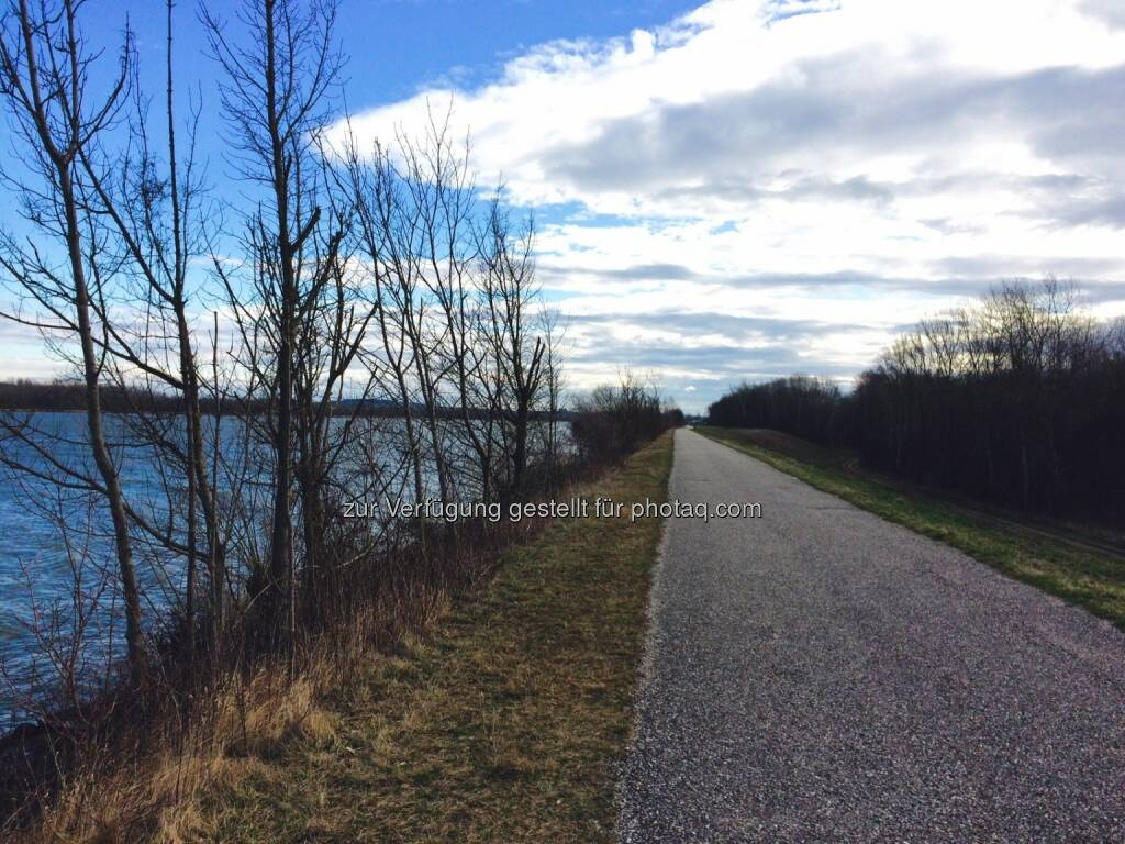 Donauradweg (25.03.2016)