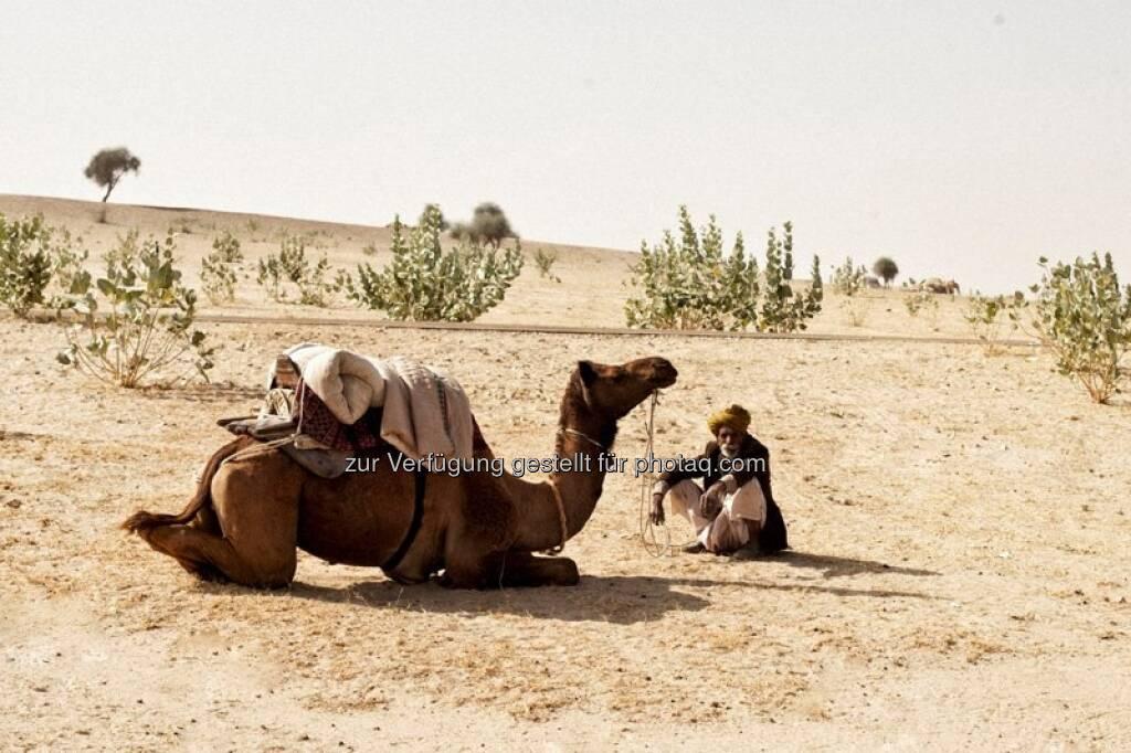 Wüste - Indien by http://www.florap.com  (13.04.2013)