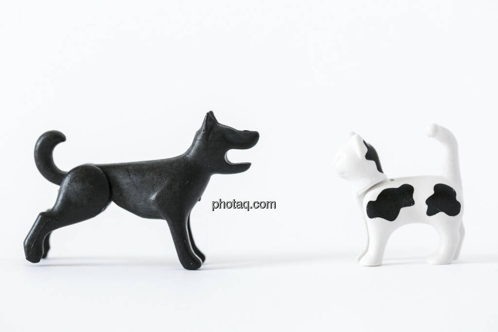 Wie Hund und Katz, Hund, Katze, Playmobil, © Martina Draper (14.04.2013)
