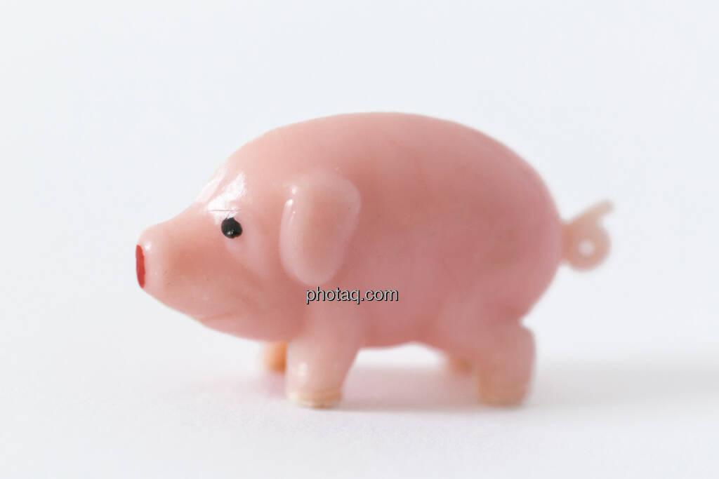 Schwein gehabt, Glücksschweinchen, © Martina Draper (14.04.2013)