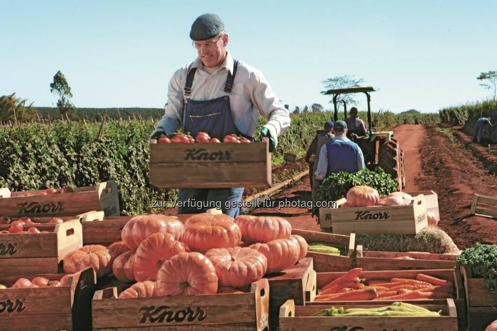 Landwirtschaftlichen Rohstoffe aus nachhaltigem Anbau : Unilever legt fünften Fortschrittsbericht zu Nachhaltigkeit vor : Fotocredit: obs/Unilever Deutschland GmbH/Knorr, © Aussender (27.05.2016)